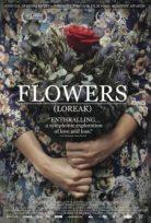 Çiçekler Loreak