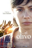 Zeytin Ağacı El Olivo