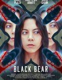 Black Bear – Czarny niedźwiedź
